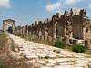 Týros, Al-Bass Site, akvadukt vedle římské cesty, foto: Milena Šumanová