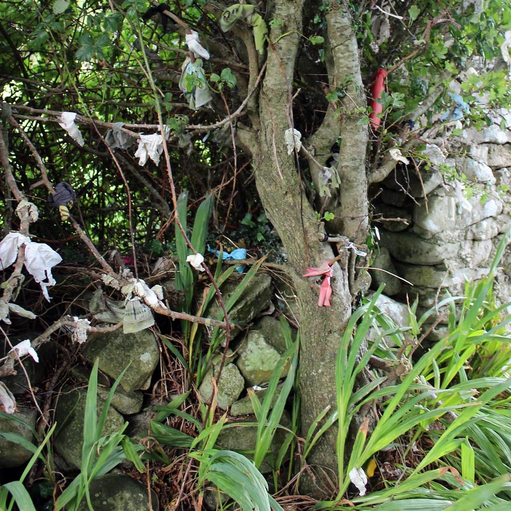 Raggedy Kingdom: Raggedy Ann Turns - Raggedy Tree