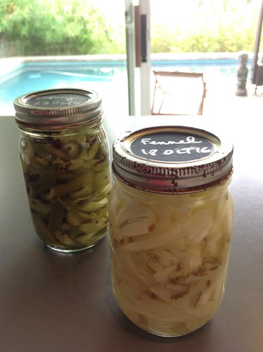 Fennel & celery pickles | by *FrogPrincesse*