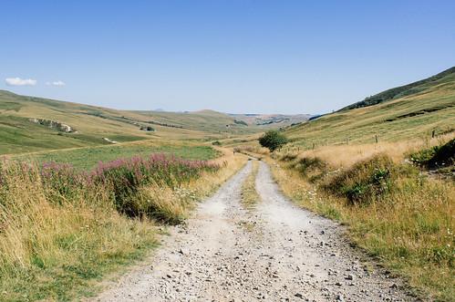 Sentier perdu entre les sommets et les prairies du Cézallier