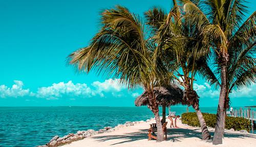 sunsetkey walking waterways skies coconuttree people blue beach seashore seascape travelling tourism autdoor
