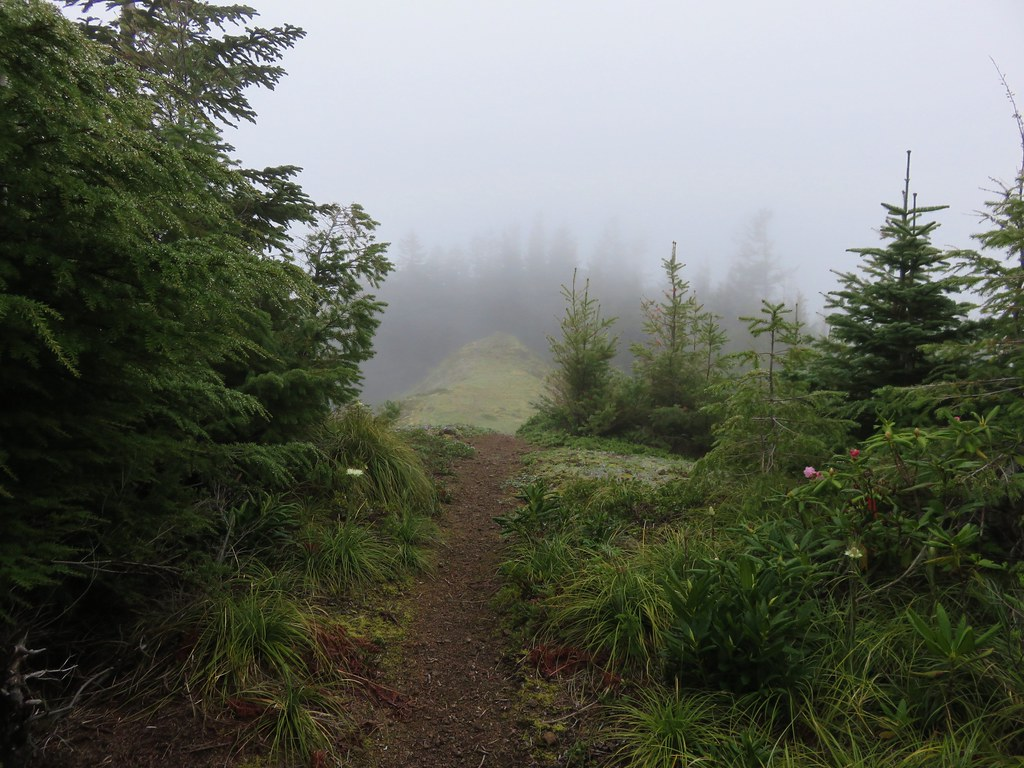 Huckleberry Mountains summit