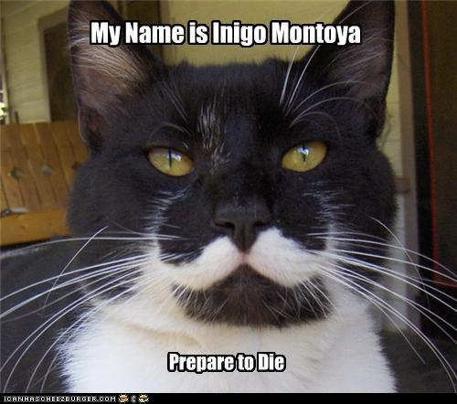 funny pictures - My Name is Inigo Montoya | Paul Anderson | Flickr