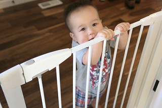 Munchkin gate with child holding onto gate | by yourbestdigs
