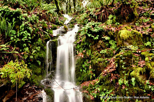 waterfall castlrock washington southarmstudio