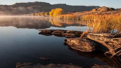 autumn trees mist fall reflections frost colours dam central nz otago butchers fleursetpaysages