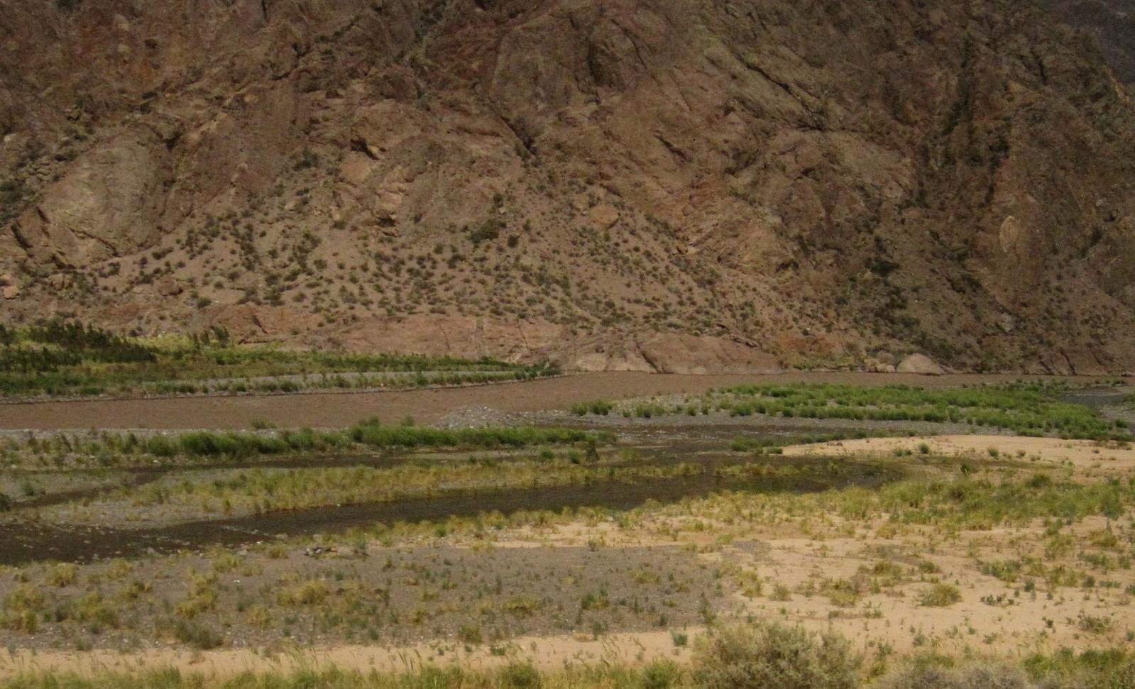 Mendoza 438
