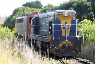 TL152 & S302 Light Engine in Portland | by Australian Trains