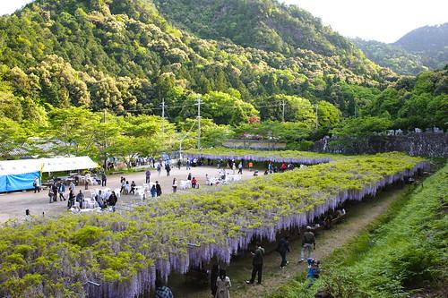 zeiss t temple nikon carl 235 distagon d700 byakugouji
