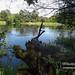 National Park Wielkopolski / Park narodowy Wielkopolska