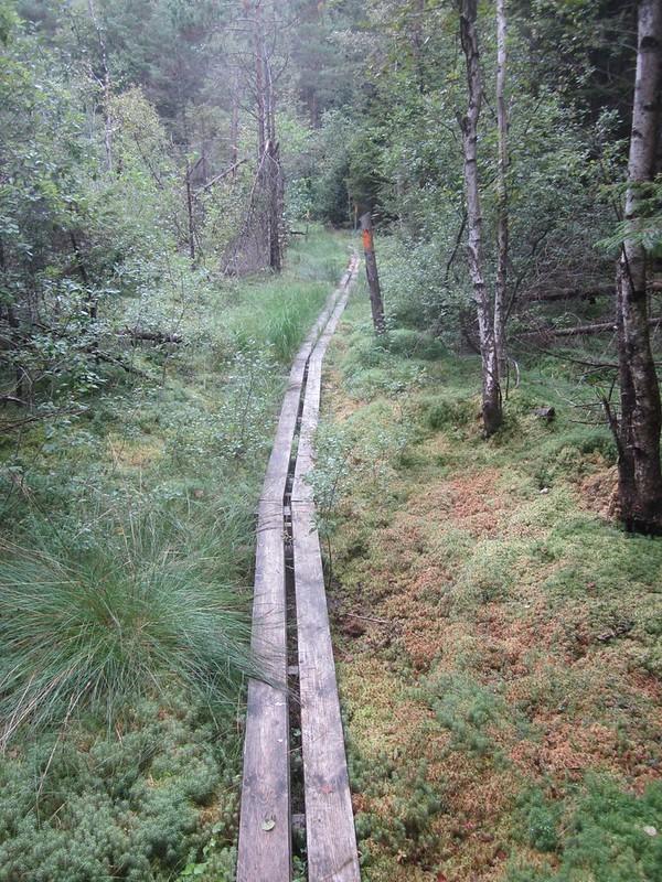 Plankenweg