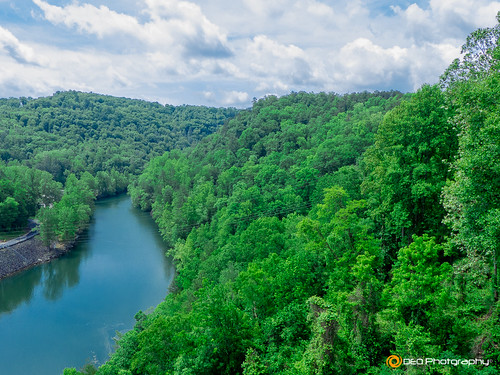 trees sky water river landscape outdoor panasonic hiwasseeriver hiwasseedam cherokeecountync panasonicfz200 deophotography