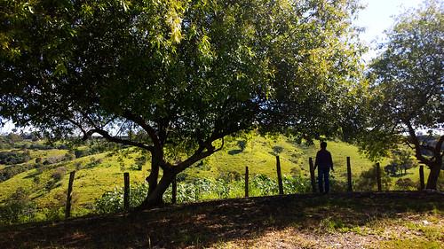 brasil brazil brézil pedreira sp pedreirasp campo mata natureza américadosul southamérica paisagem landscape árvore gente people
