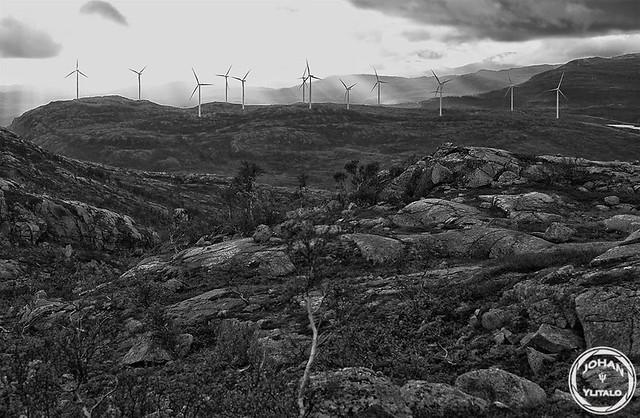 vindkraft2