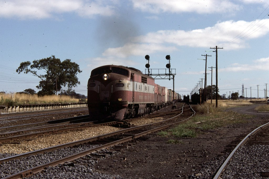 GM24 at Somerton by Alan Greenhill