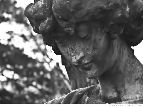 hollywood cemetery | by crystalliora ✦ vesper704