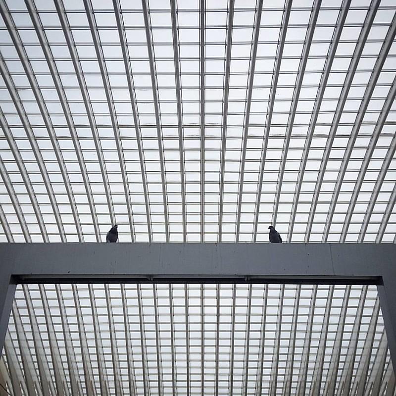 Duiven  www.erikschepers.com  #minimalistic #minimalist #architecture #symmetrical #symmetricalmonsters #ig_architecture #minimalism_life #whiletravelling