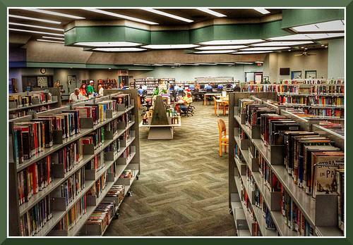 day9 photo foto safari visit sun city public library see books videos even puzzles