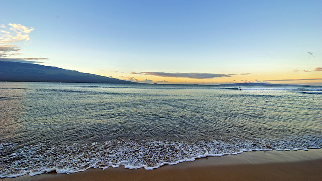 Love for the Ocean