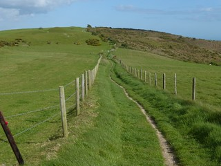 South Dorset Ridgeway Just east of the Hardy Monument
