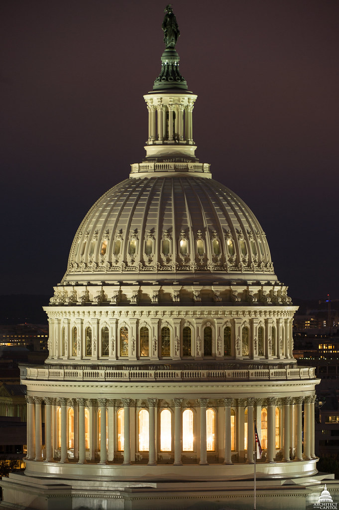 Restoring the Capitol Dome cover image