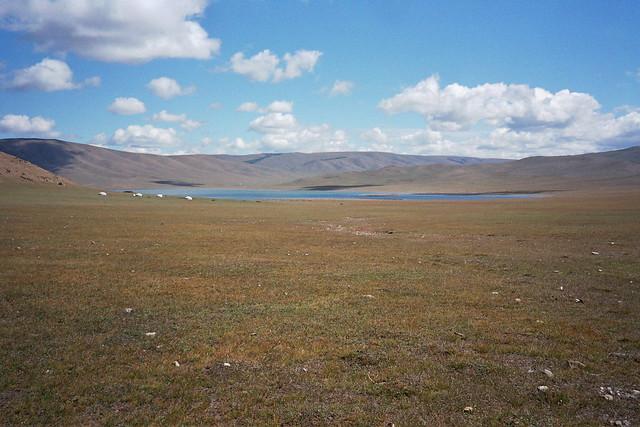 Mongolie, lac Terkhiin Tsagaan - Mongolia, lake shore
