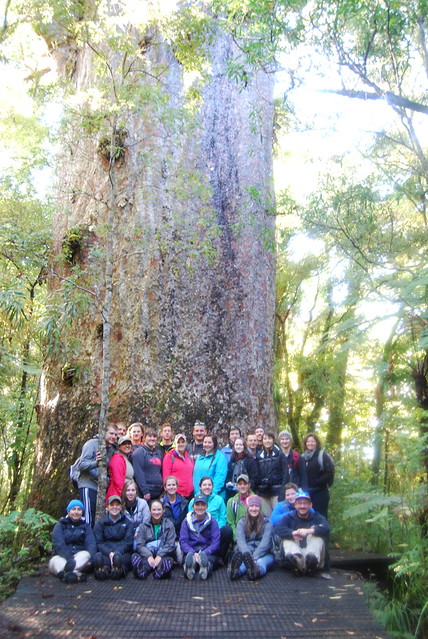 Group picture in Kauri Tree Forest