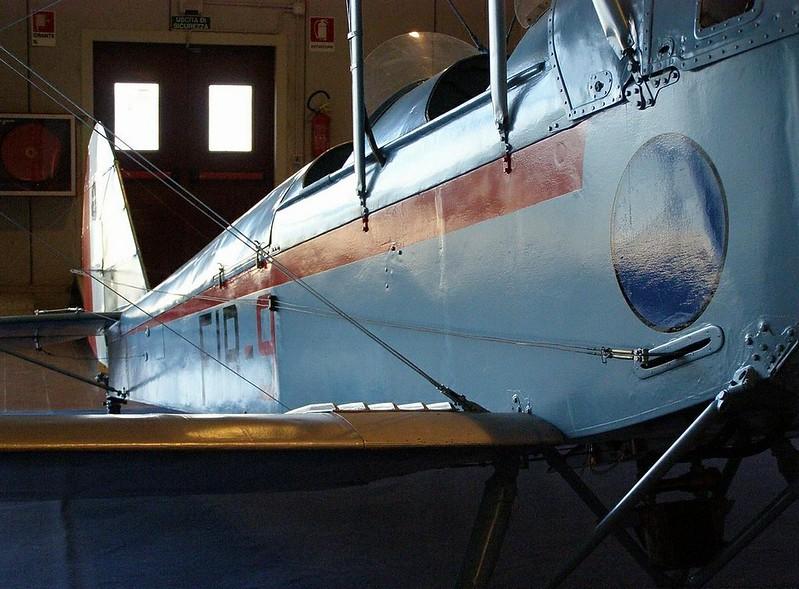 Caproni Ca.100 9