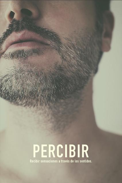 Percibir