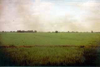 197910.158.indien.fahrt.raxaul