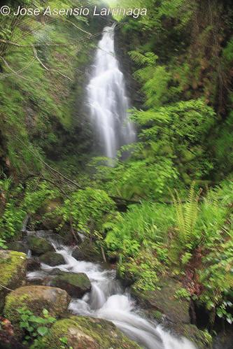 Cascada #DePaseoConLarri #Photography  3