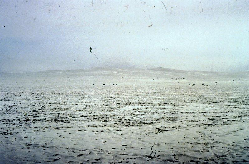 MONGOLIA 1994 01-0027