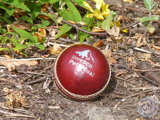 Cricket Ball | by CompleteMerchandise