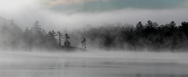 Grundy Misty Morning-1363