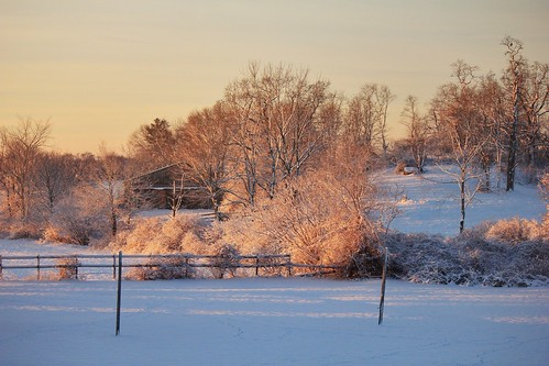 winter sunlight snow pasture warrenri snapseed 353652014