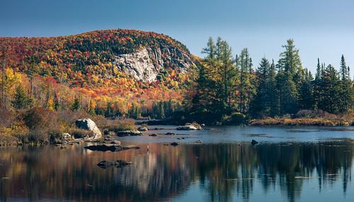 Mount Marshfield in Peak Foliage   by axsnyder