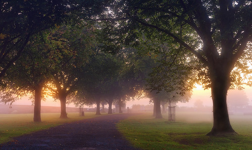 light mist landscape dawn nikon mood warwickshire riveravon rivermist bidfordonavon dawnmist d7000 jactoll