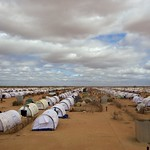 UNHCR News Story: UNHCR stresses that repatriation of Somalis from Kenya must be voluntary