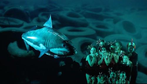 """Si los peces hablaran... """"D. Canino"""""""