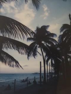 playa del carmen at dusk