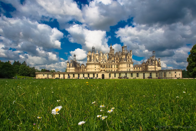 The Summer Château