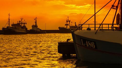 orange haven nature port sunrise landscape denmark boot boat harbour natur shrimp hafen landschaft dänemark sonnenaufgang shrimper thyborøn pdpnw derhalbling