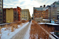 The High Line, 01.26.14