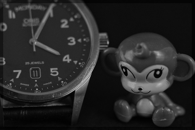 Oris Watch & Monkey