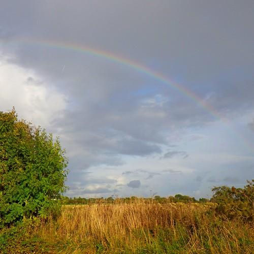 Rainbow over Elworth | by Wildlife Terry
