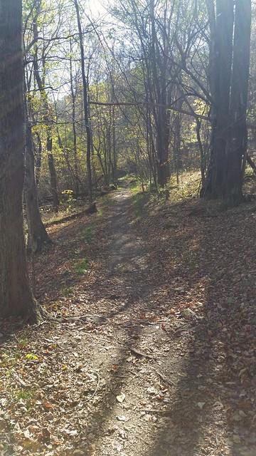 Jones Run Trail Shenandoah National Park