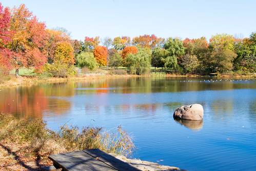 bellevuestatepark de newcastlecounty pond water wilmington autumn colors delaware fall foliage park seasons