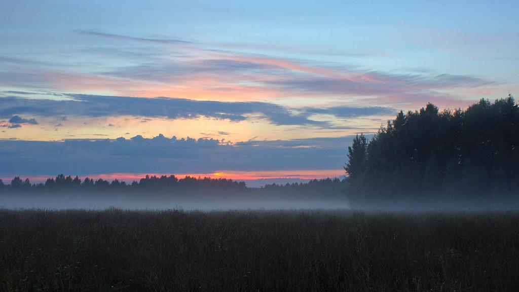 misty tomorrow