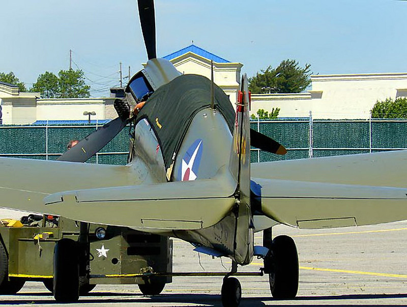 Curtiss P-40 Warhawk 22 (10)