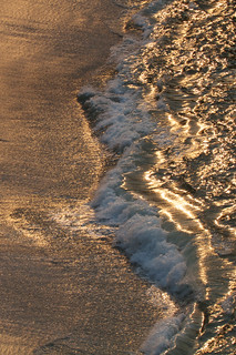 Golden waves   by Tom Clifton